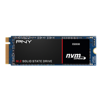 PNY CS2030 Series SSD Data Recovery