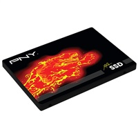 PNY CS2100 Series SSD Data Recovery